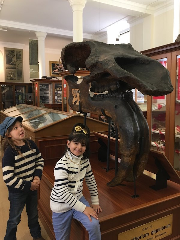 Children visiting the Sedgwick Museum and having a wonderful time